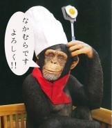 中村チンパンジー
