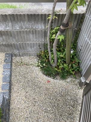 植え桝を広くとる02